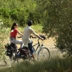 Activité sur place - Le vélo c'est bon pour la santé