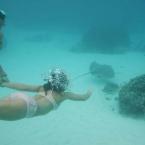 Plongée sous-marine en mer méditerranée